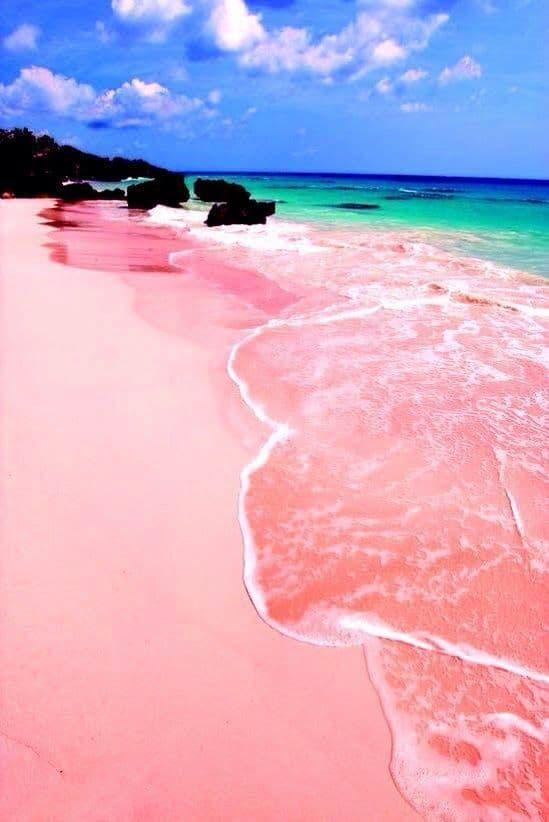 חוף עם חול וורוד בבהאמס